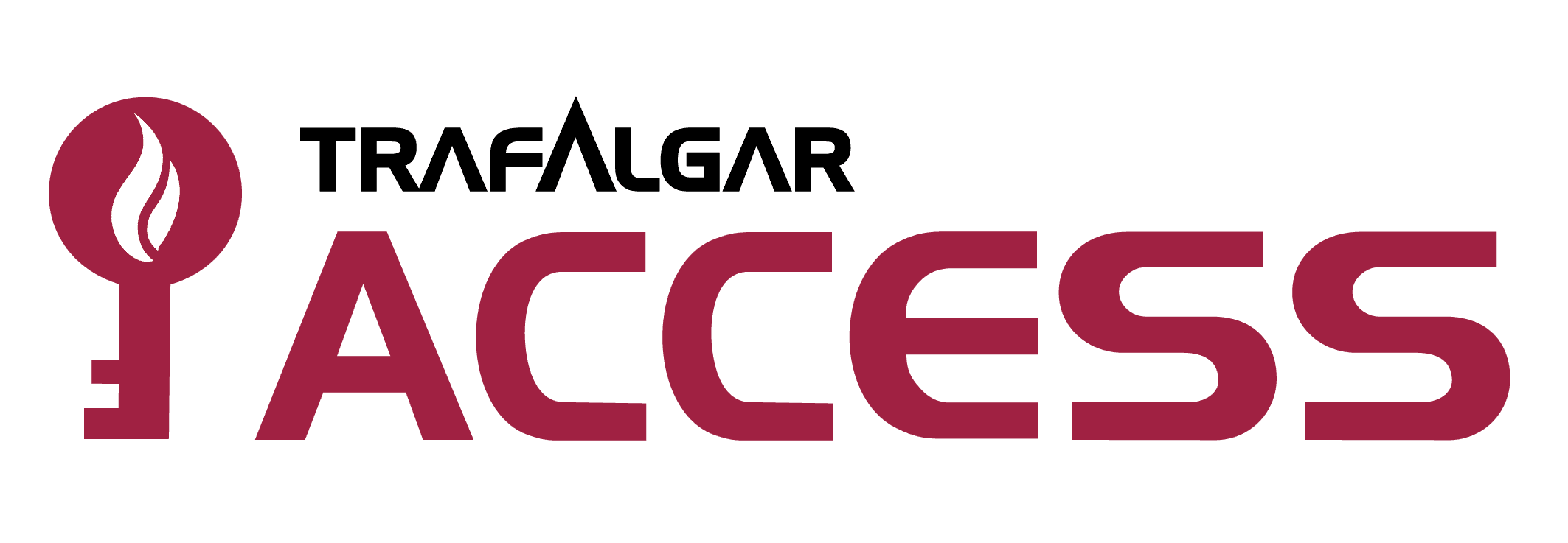 cropped-cropped-T_Access_logo_.png